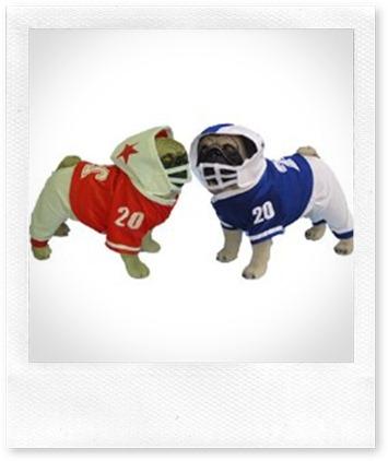 Red-Football-Uniform-Dog_BEE4D389